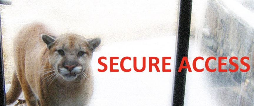 secure-access-cougar_1