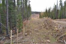 natural-range-barriers