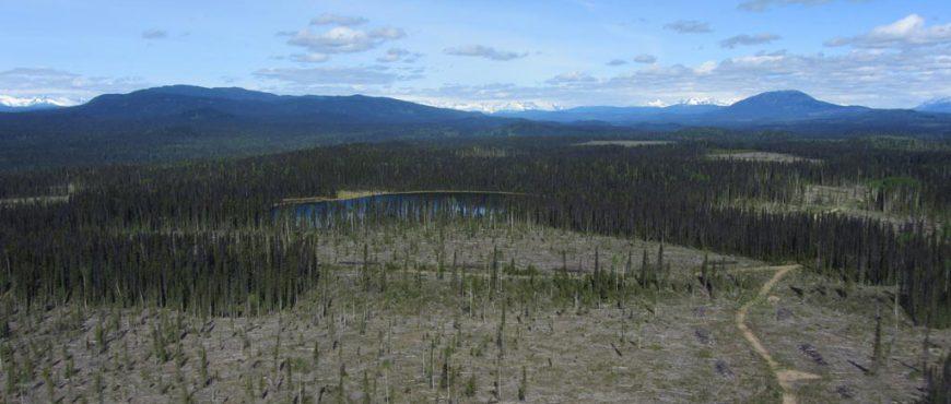 skeena-stikine-natural-resource-district
